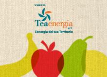 Tea Energia 2015